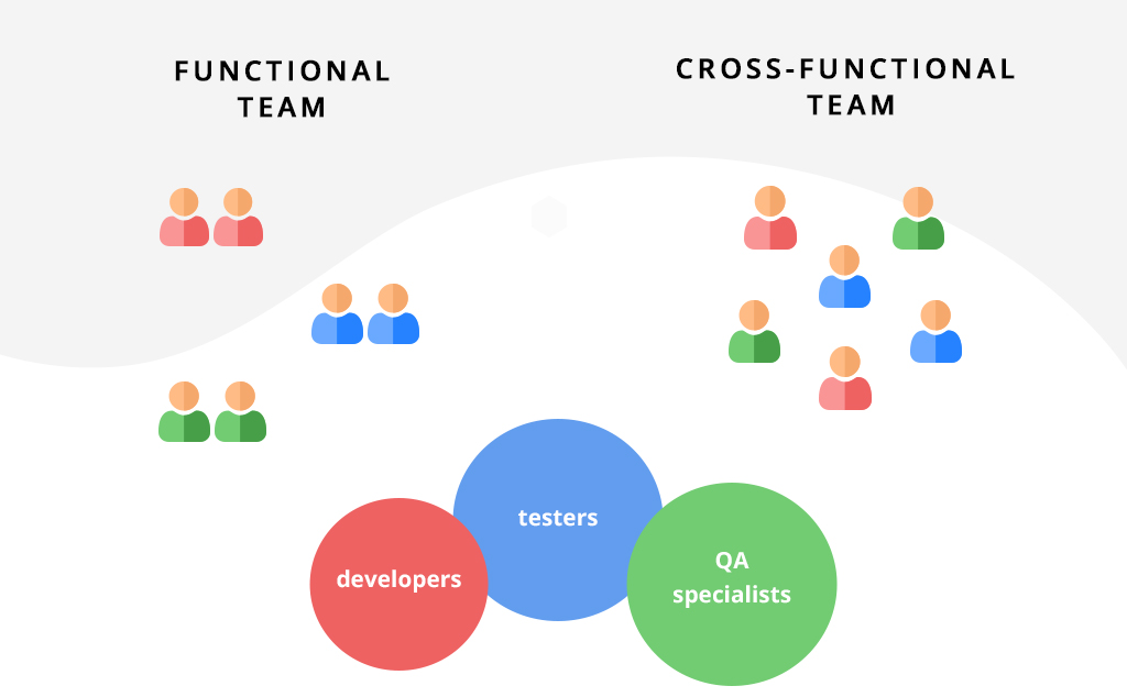 functional and cross-functional team